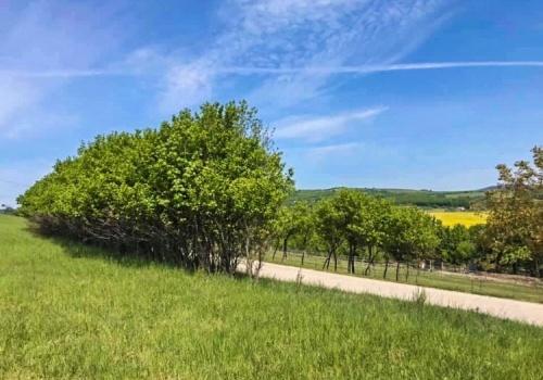 Na predaj pozemok s nádherným výhľadom obec Papraď