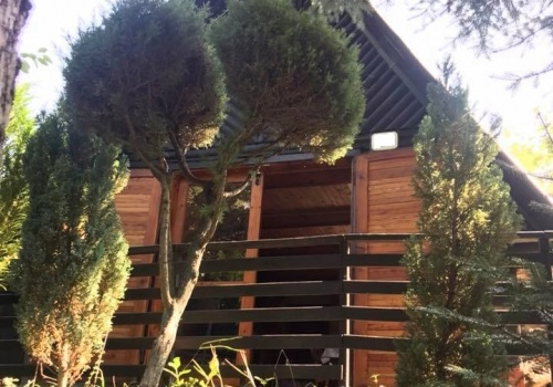 Na predaj murovaná chata s veľkým ovocným sadom a viničom